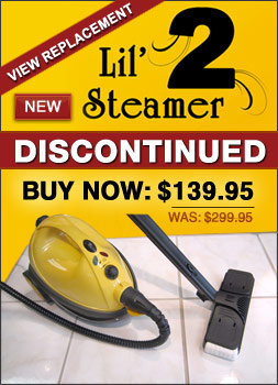 Lil Steamer 2 Steam Cleaner