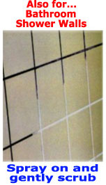 Bathroom Grout Cleaner what are the best grout cleaning chemicals for cleaning tile grout