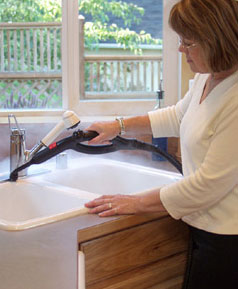 Household Applications for Ladybug Steam Cleaners