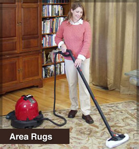 Clean your area rugs with the ladybug steam cleaner.